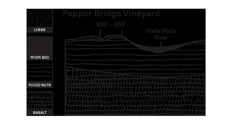 Pepper Bridge Vineyard Illustration