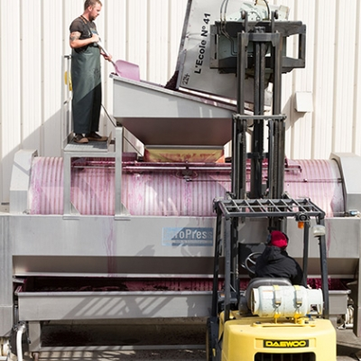 Upon completion of fermentation, grapes being moved for pressing